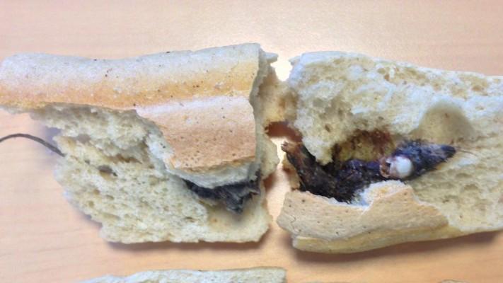Une-souris-sinvite-dans-un-sandwich