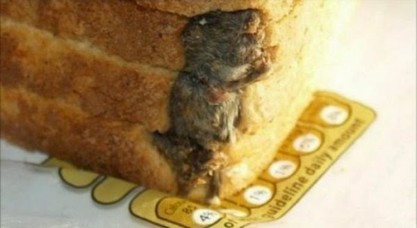 disgusting-things-people-found-in-their-food-10
