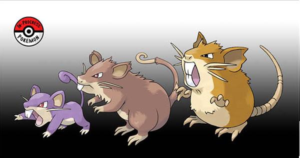 Pokemon GO évolution (9)