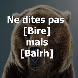 bear_8c8703_800